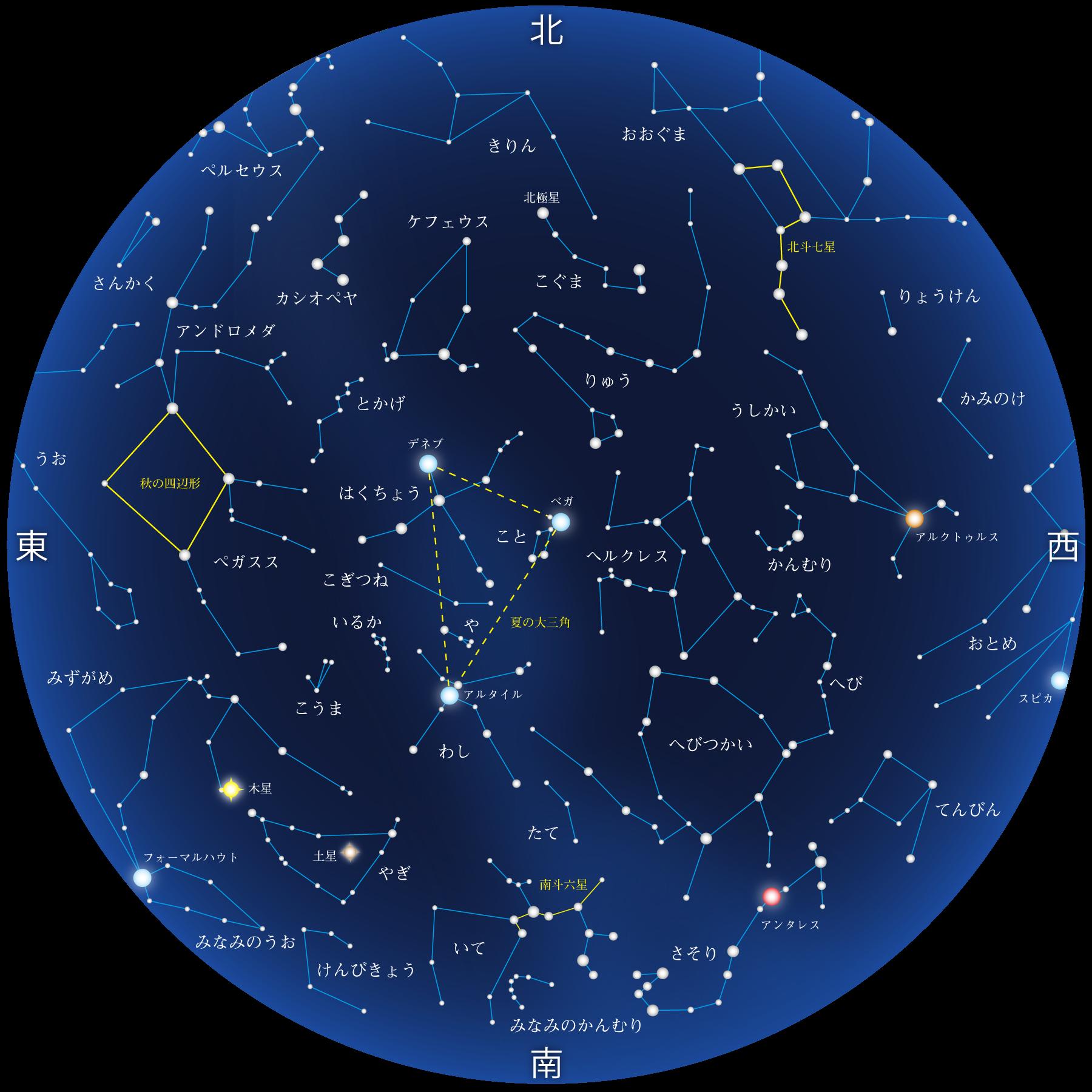 8月の星座